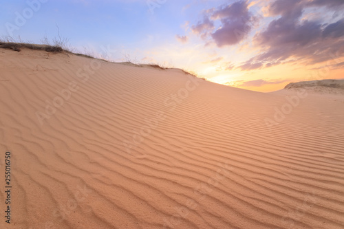 Foto  sunset on sand dunes / bright colors of early spring