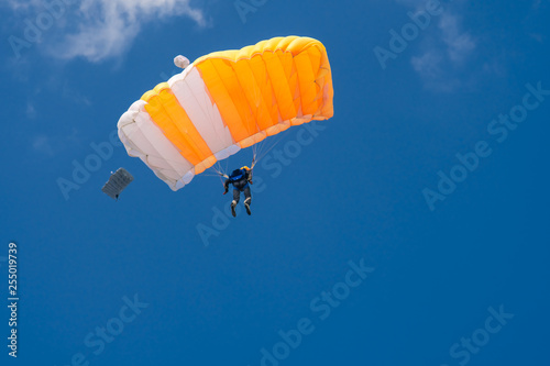 Fotografie, Obraz  Skydiver is flying with parachute in blue sky