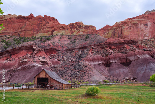 Foto  Historic barn with horses in the Capitol Reef National Park, Utah