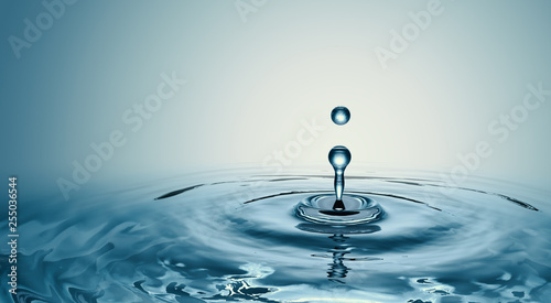 Fotografie, Obraz  Clear Water drop with circular waves