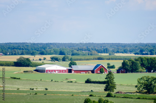 Spoed Foto op Canvas Olijf landscape with houses, in Sweden Scandinavia North Europe