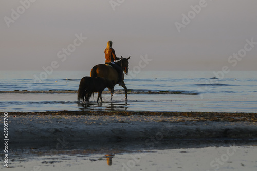Fotografie, Obraz  Reiten am Strand