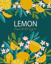 Tropical Summer Fruit Poster With Place For Text. Blooming Citrus Tree In Hand Drawn Style. Vector Greeting Card Design With Lemons And Flowers.