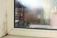 Mold Near A Window In House. C...
