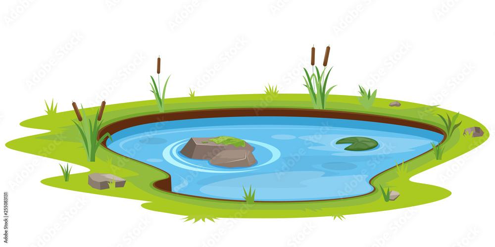 Fototapety, obrazy: Natural pond outdoor scene