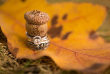 Wedding Rings With Fall Leaf And Acorn