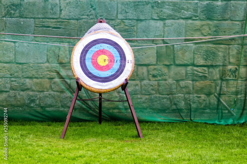 Archery target standing on the grass. Canvas Print