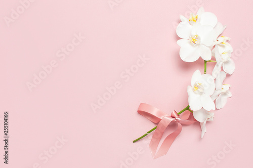 Poster de jardin Orchidée Beautiful White Phalaenopsis orchid flowers on pastel pink background top view flat lay. Tropical flower, branch of orchid close up. Pink orchid background. Holiday, Women's Day, Flower Card, beauty