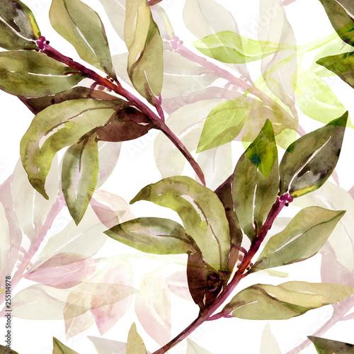 wzor-drzewa-laur