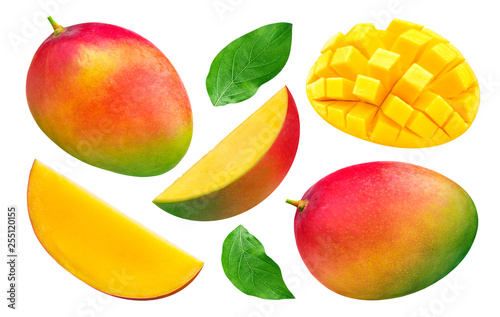 Mango collection isolated on white background Wallpaper Mural