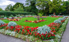 View Of The Park Trees And Flower Beds With Flowers