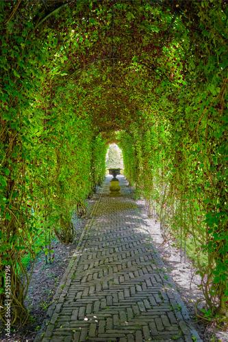 Green berceau arbour  overgrown garden path Fototapeta