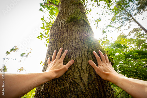 Foto  Personal perspective of a man touching a tree