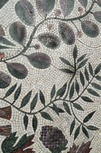 Colorful Mosaic Tile With Plant Pattern, Authentic, Top View
