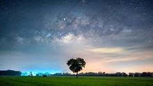 Milky Way Galaxy With Heart Shape Tree In Paddy Fields