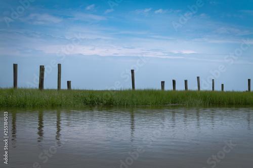 Fotografie, Obraz  Stonehenge-type structure of old pilings in salt water marsh
