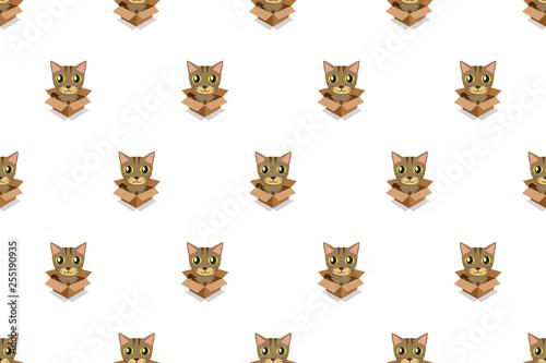 Fototapeta Vector cartoon tabby cat in cardboard box seamless pattern for design