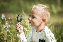 Young Researcher Explores Natu...