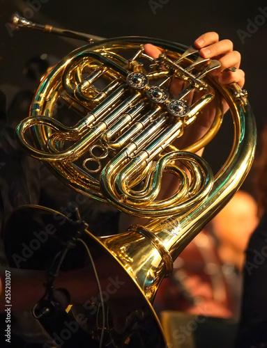Spoed Fotobehang Muziek Waldhorn