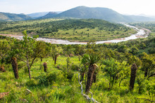 View Of White Umfolozi River With Mountain Aloe Against Sky