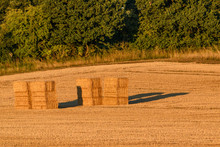 A Summer Rural Scene With Two Bales Of Straw. The Two Freshly Cut Bales Are Illuminated By The Low Evening Sun. There Are Green Trees In The Background.