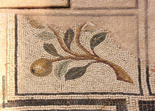 Fotografia  ramo con frutti; mosaico pavimentale romano; area archeologica delle Domus dell'
