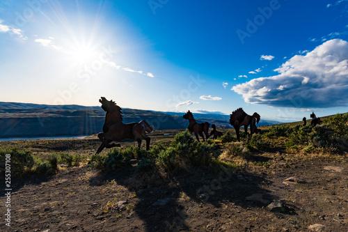 Fotografía  Wild Horse Statues