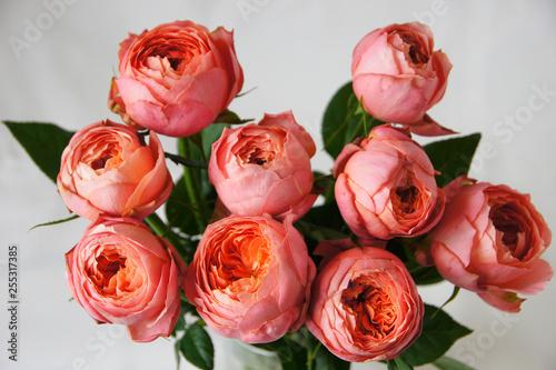 Fotografia  ロマンティックアンティークという名前の薔薇の花束
