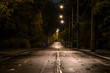 Leinwanddruck Bild - empty night road