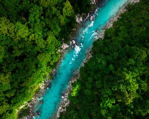 FototapetaBlue river flowing in forest at spring