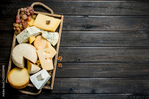 Fototapeta Different types of cheese in a wooden tray with grapes . obraz