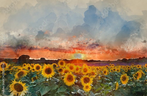 Photo  Watercolor painting of Sunflower Summer Sunset landscape with blue skies