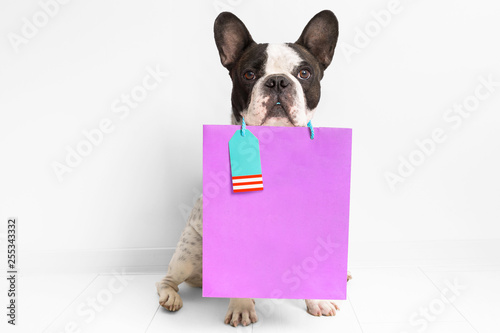 Stickers pour portes Bouledogue français French bulldog with the shopping bag