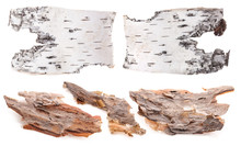 Pieces Of Birch And Pine Bark Isolated On White