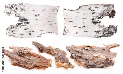 Pieces of birch and pine bark isolated on white Wallpaper Mural