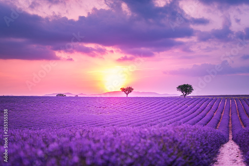 Foto op Canvas Snoeien Stunning landscape with lavender field at sunset. Blooming violet fragrant lavender flowers with sun rays with warm sunset sky.