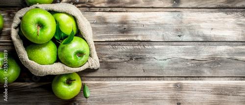 Fotomural  Juicy green apples in an old bag.