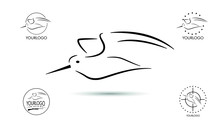 Woodcock Hunt Logo Designs Vector, Badge Of Woodcock Hunting Logo