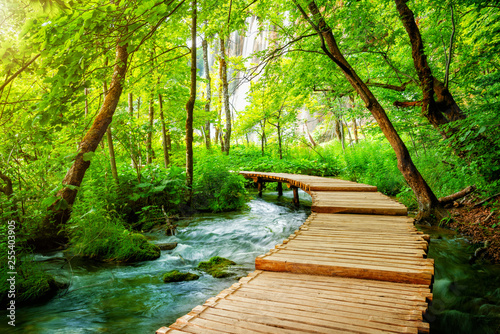 Papiers peints Route dans la forêt Beautiful wooden path trail for nature trekking with lakes and waterfall landscape in Plitvice Lakes National Park, UNESCO natural world heritage and famous travel destination of Croatia.