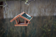 Brown Bird Feeder With Green R...
