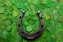 Horse Shoe On Green Clovers Background. St. Patrick's Day