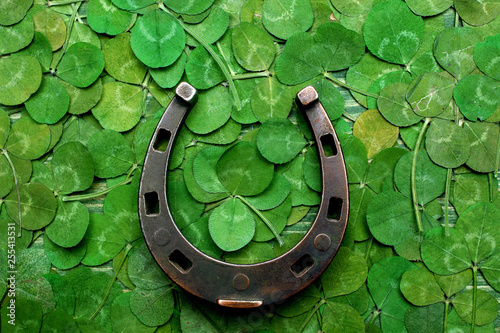 horse shoe on green clovers background. St. Patrick's day Tableau sur Toile