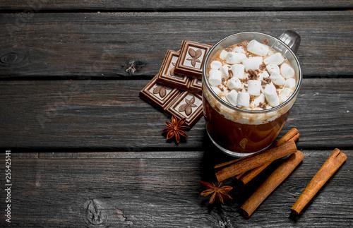 Foto auf Leinwand Schokolade Hot chocolate with cinnamon and marshmallows.