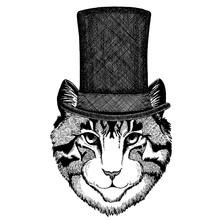 Wild Animal Wearing Top Hat, C...