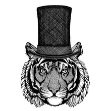 Wild Animal Wearing Top Hat, Cylinder. Hipster Tiger, Cat