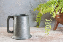 Vintage Pewter Beer Mug And Green Plant