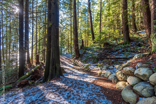 Spoed Foto op Canvas Grijze traf. Fragment of winter trail in park in West Vancouver, Canada.