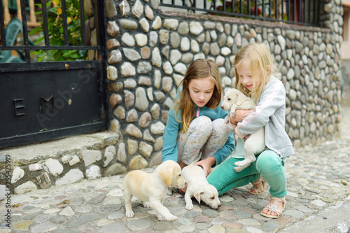 Two Cute Young Sisters Holding Small White Puppies Outdoors Kids Playing With Baby Dogs On Summer Day Buy This Stock Photo And Explore Similar Images At Adobe Stock Adobe Stock
