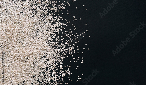 Scattered white sesame seeds on black textured paper background Wallpaper Mural