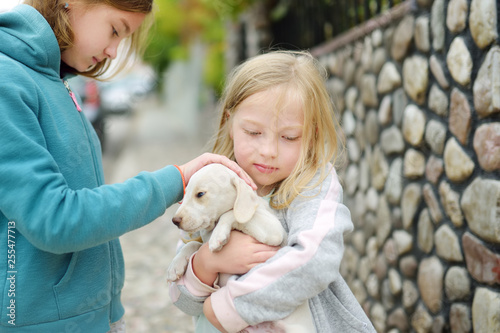 Two Cute Young Sisters Holding Small White Puppy Outdoors Kids Playing With Baby Dog On Summer Day Buy This Stock Photo And Explore Similar Images At Adobe Stock Adobe Stock